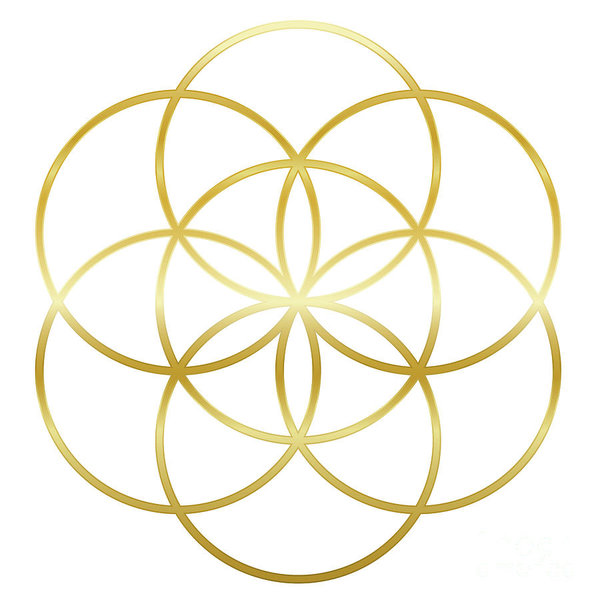 golden-seed-of-life-flower-of-life-peter-hermes-furian